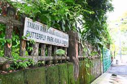 Struggling butterfly park hopes for lifeline