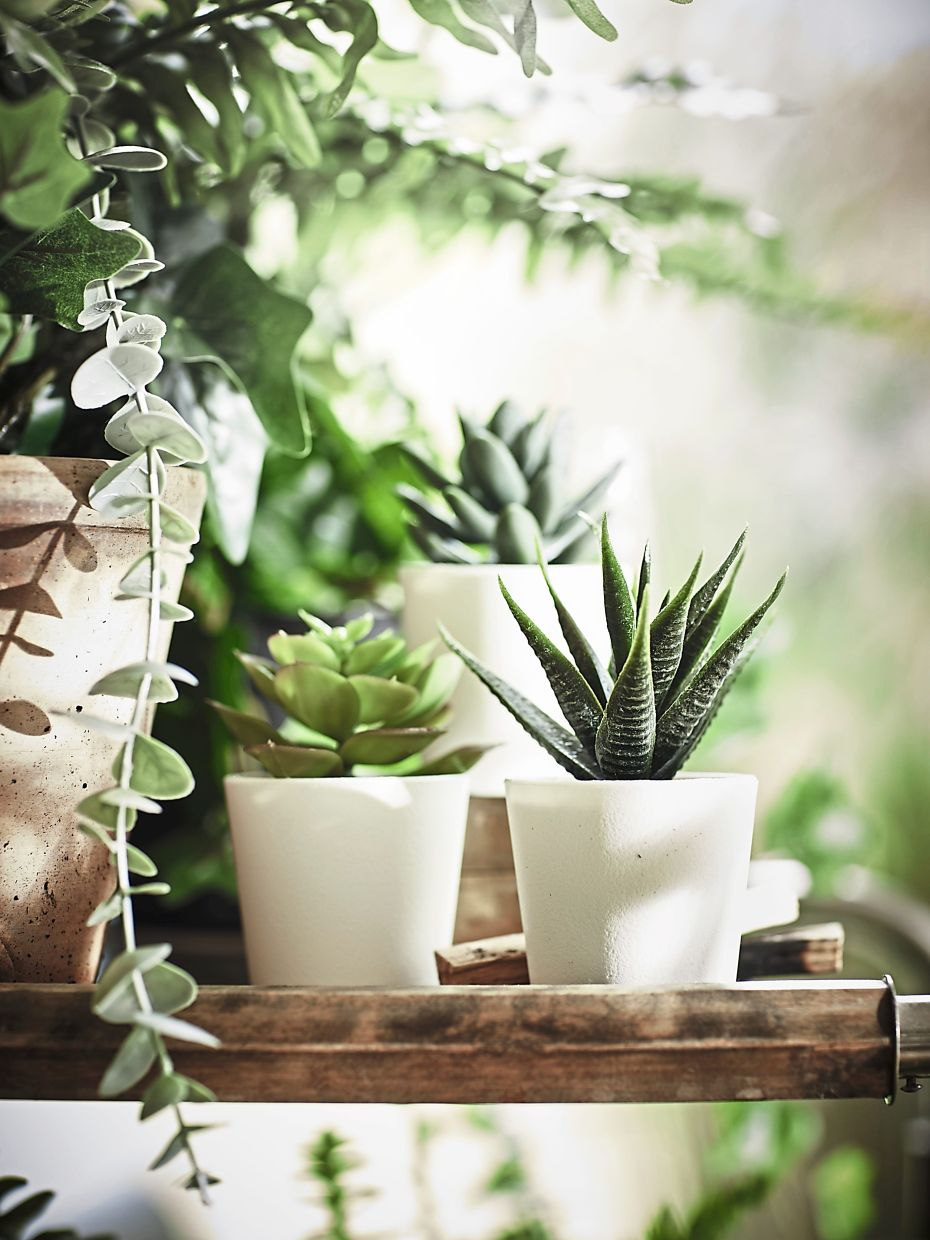 Brighten up different spots with artwork, plants and decorative pieces to reflect your personality.