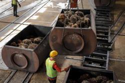 United Plantations Q2 profit rises, but labour shortage clouds outlook