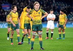 Rugby-Waratahs lock in Wallaby Hanigan for 2022