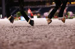 Equestrian-Australia showjumpers can compete after teammate's cocaine scandal