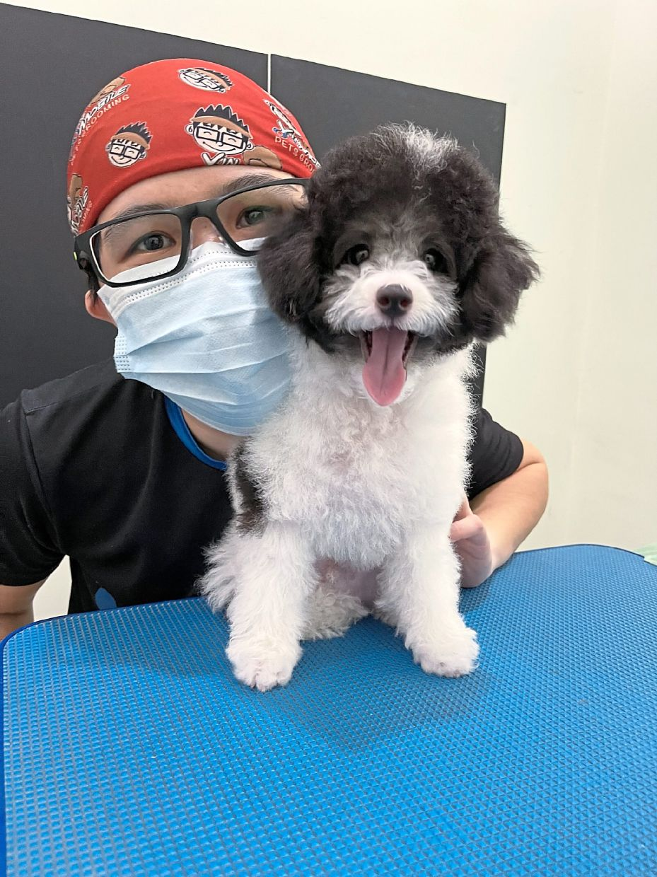 Yin Tan is worried that Blue will have separation anxiety when she goes back to work. Photo: Yin Tan