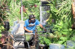 Fresh produce from your neighbourhood farmer