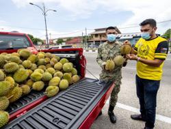 Drive-through durian: Kota Baru goldsmith gives away 1.2 tonnes of king of fruits