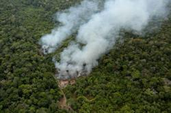 New warning system to sound alarm on rainforest tipping points