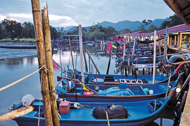 Balik Pulau estuary at Sungai Pulau Betong. Photo: Adrian Cheah