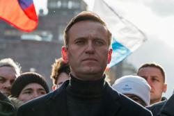 Kremlin critic Alexei Navalny's website blocked by regulator before election