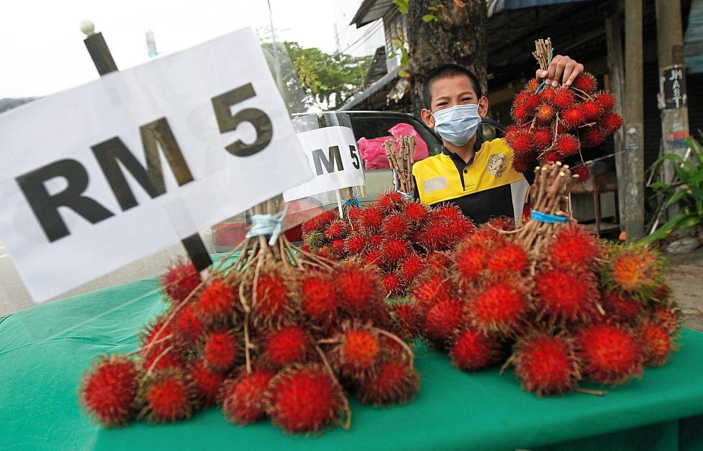 Aiman Haziq Anuar, 12, helping his father sell rambutans at a stall along Jalan Muthu Palaniappan in Bukit Mertajam.