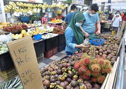 Local fruits at 'rock bottom' prices
