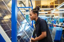 Majority of future energy industry jobs will be in the renewables sector, research finds