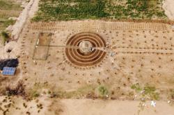 Senegalese plant circular gardens in Green Wall defence against desert