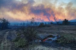 Three dead as wildfire in south Turkey rages on -minister