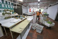 Outbreak of Covid-19 among poultry sellers leads to market closure