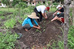 Cultivating council land for residents' benefit