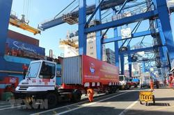 Ho Chi Minh City port stops receiving imports as containers pile up