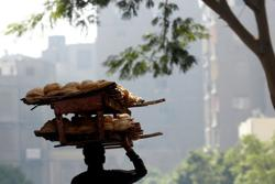 Egypt's Sisi calls for first bread price rise in decades