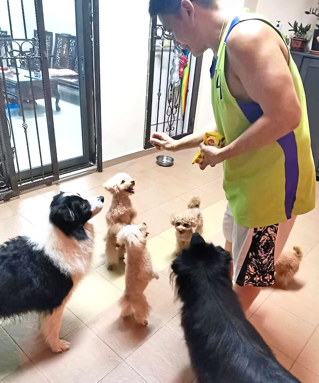 Tan interacting with some of his dogs. He says children learn the importance of discipline and responsibility by taking care of their pets.