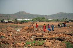 USAID chief concerned by 'dehumanising rhetoric' in Ethiopia amid war in Tigray region