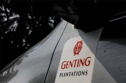 Young trees a boon to Genting Plantations