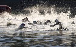 Olympics-Marathon Swimming-Elbows and fish: Swimmers navigate ordeals of open water at Tokyo Games