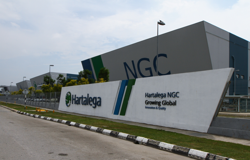 The Week That Was - Hartalega, FBM KLCI, Global supply chain