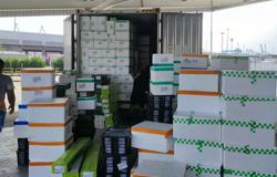 Foiled you, rapscallions: Maqis seizes 1,000kg of undeclared spring onions from China