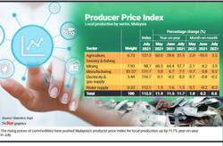 PPI for local production up 11.7% in July