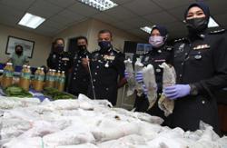 Police crack-down on ketum in Johor, 17 arrested in raids