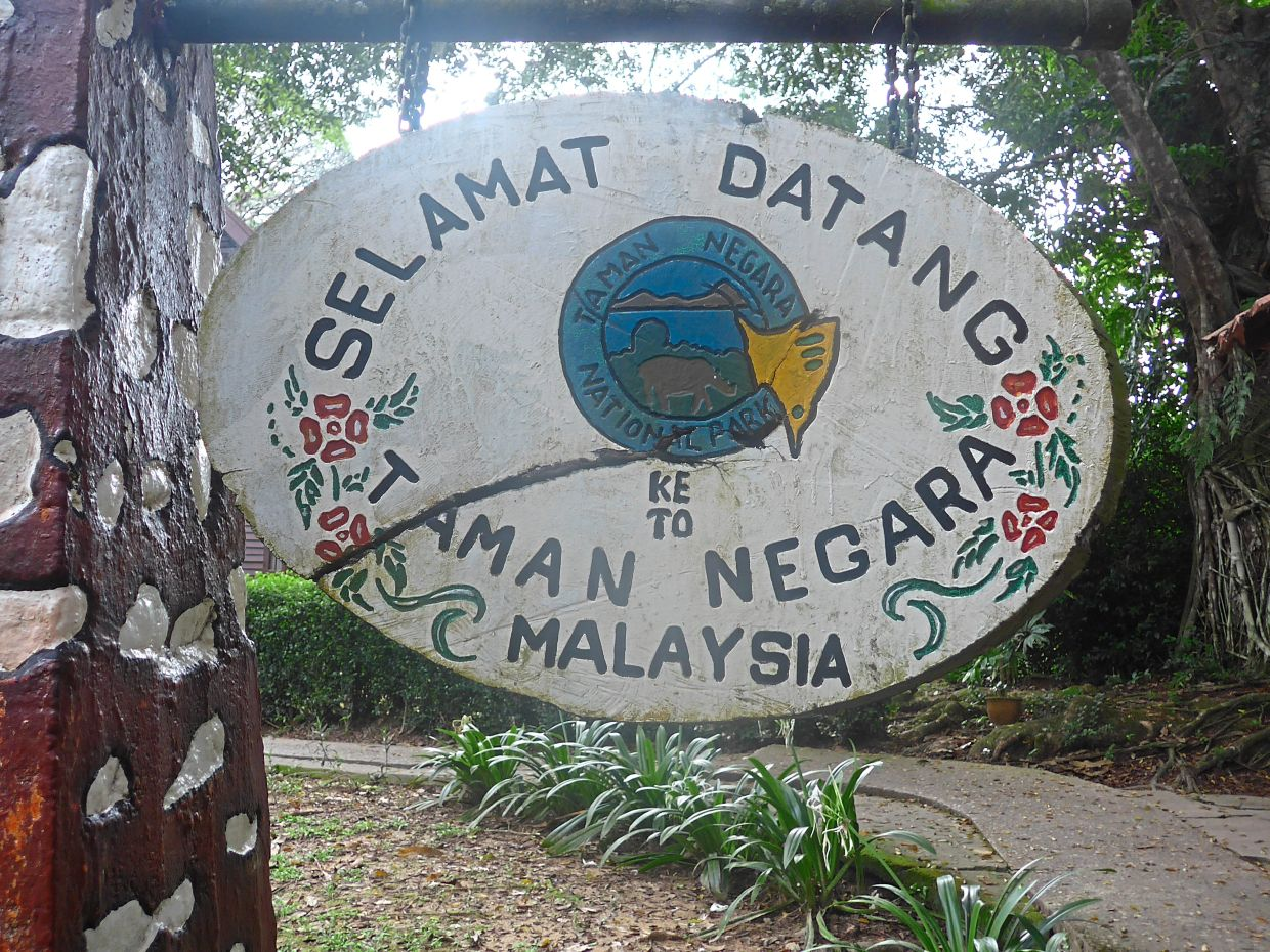 Consider spending a weekend at Taman Negara once restrictions are lifted.