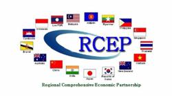 Cambodian parliament ratifies RCEP, world's biggest free trade pact
