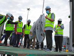 NBCT set to become country's main tuna terminal