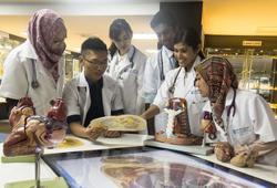 How Monash is nurturing doctors of the future