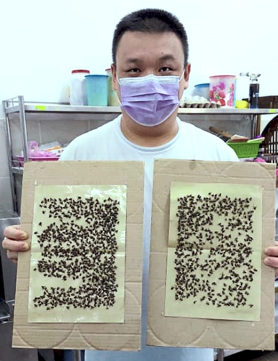 Chong says his customers always complain about the flies at his coffeeshop despite his efforts to keep the pests away.