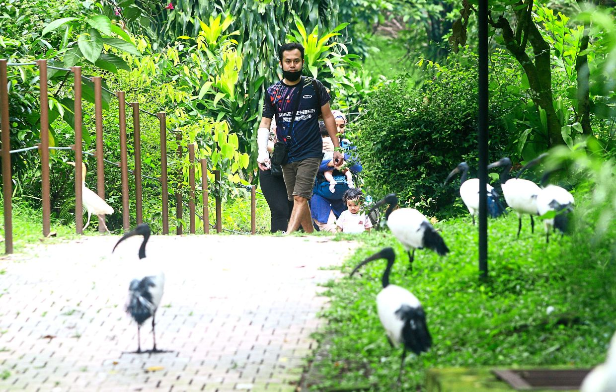 KL Bird Park is among the venues of choice for those wanting to take full advantage of the relaxed rules. — Photos: CHAN TAK KONG/The Star