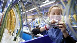 China's industrial output up 5.3% year-on-year in August