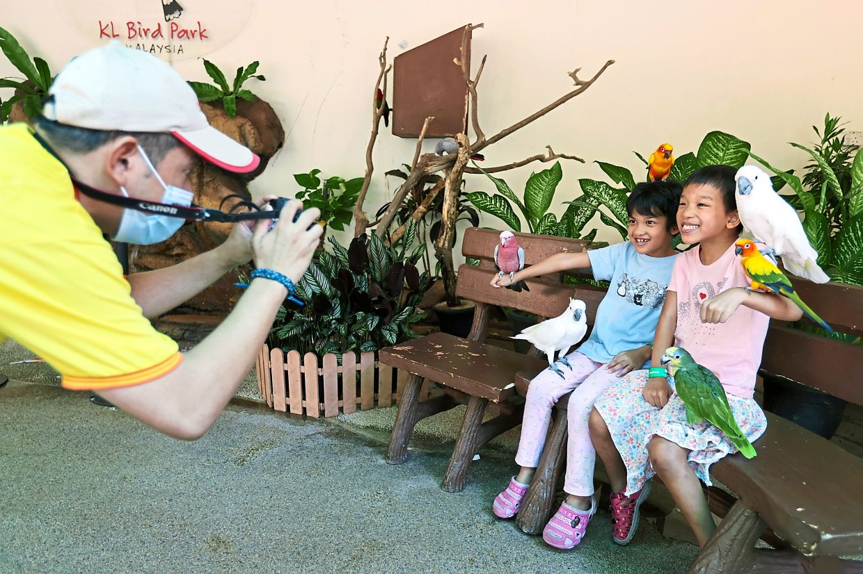 Capture memorable moments at KL Bird Park by taking photos with some of the more colourful parrots, cockatoos, conures and macaws at a dedicated booth.
