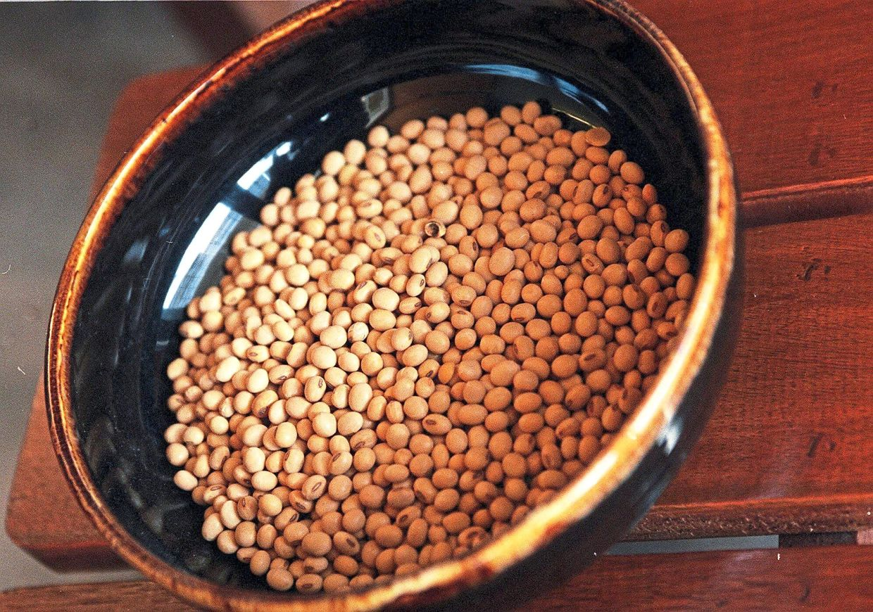 Soybeans contain isoflavones, which have a mild oestrogen-like effect that may help to decrease the symptoms of menopause.