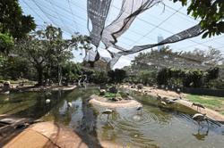 KL's bird park all set to soar again