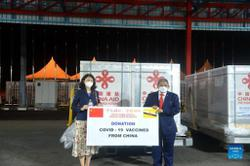 Brunei continues Covid-19 vaccination with China's Sinopharm donations