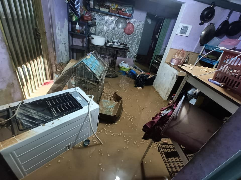Flooded shelter for the strays.