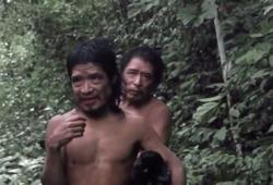 Brazil renews protection of little-seen Amazon tribe for six months