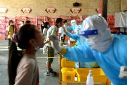 Chinese mainland reports 31 new locally transmitted Covid-19 cases