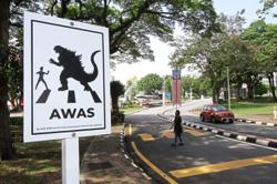 Watch out for Godzilla's little cousins crossing