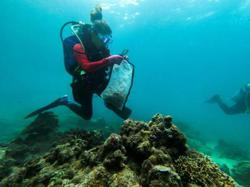 Philippines divers clear plastic waste from corals for World Cleanup Day