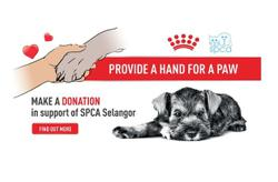 Royal Canin launches fundraising campaign for SPCA Selangor