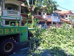 DBKL trims trees in Taman Setapak Indah