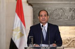 Egypt's Sisi declares interest in hosting COP27 next year