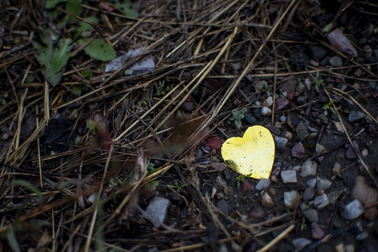 Dozens of pieces of golden heart-shaped glitter lie scattered in and around sagebrush at the barricade where media waited for news on the search for Petito. Photo: AP