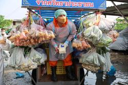 Thai monks bring grocery store to the poor