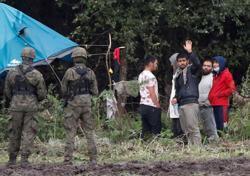 Fifth migrant dies in Belarus border area - Polish Border Guard